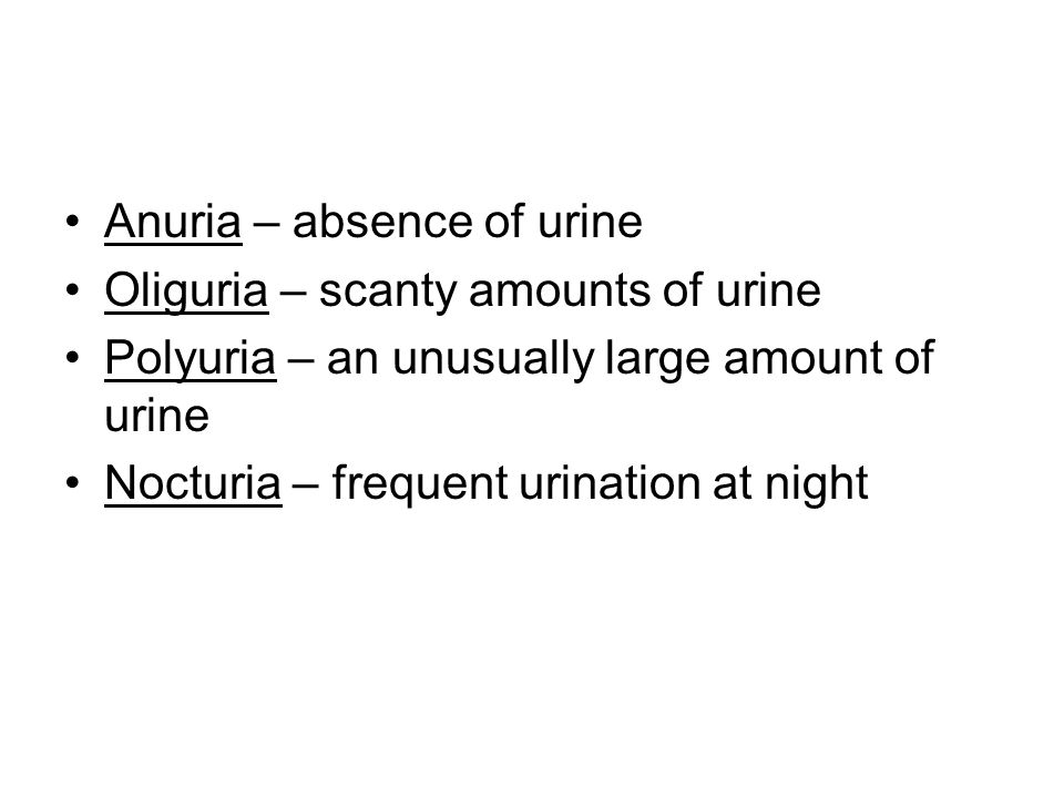 Anuria – absence of urine