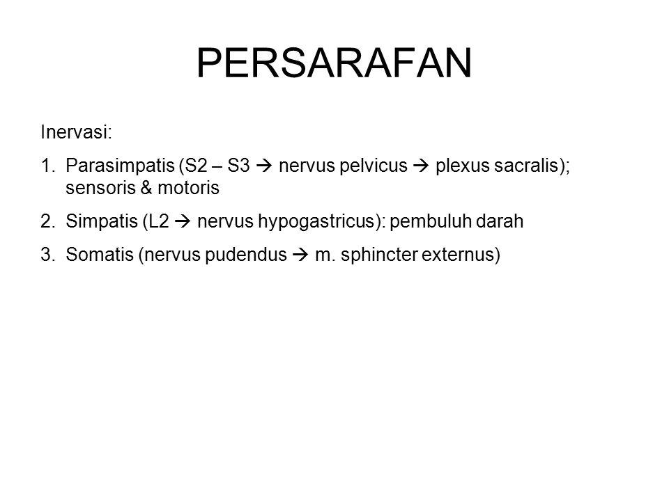 PERSARAFAN Inervasi: Parasimpatis (S2 – S3  nervus pelvicus  plexus sacralis); sensoris & motoris.