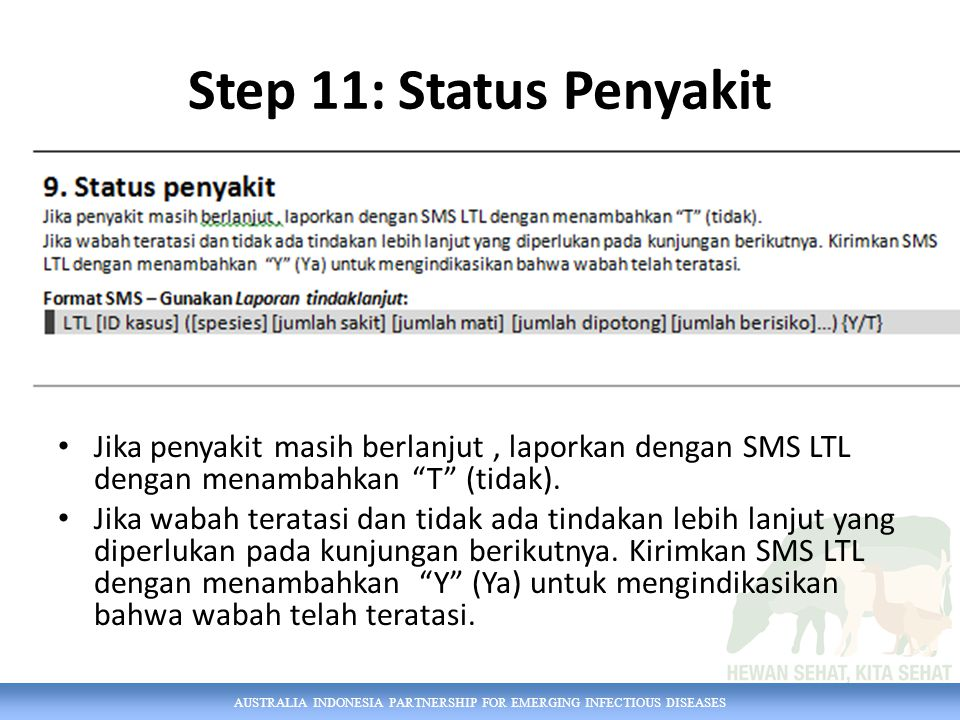 Step 11: Status Penyakit Jika penyakit masih berlanjut , laporkan dengan SMS LTL dengan menambahkan T (tidak).