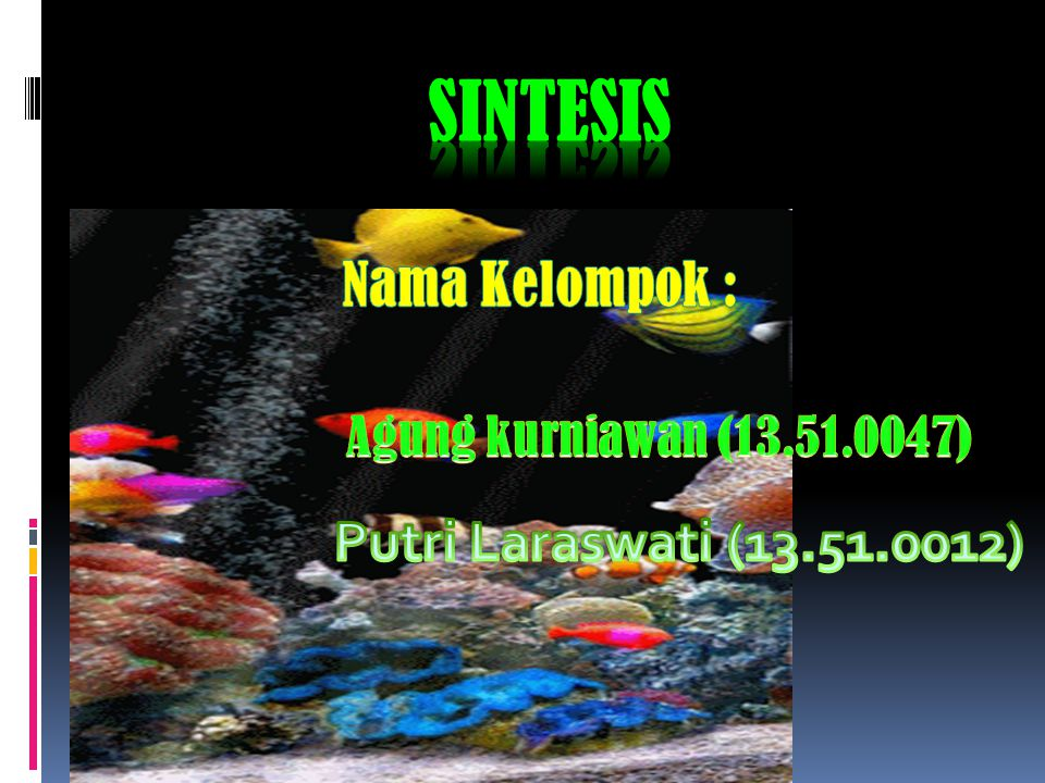 sintesis Nama Kelompok : Putri Laraswati (13.51.0012)