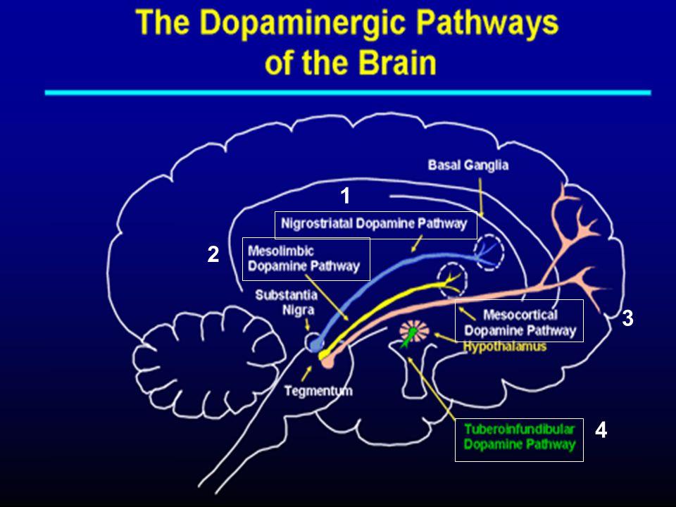 Hipotesis Dopaminergik