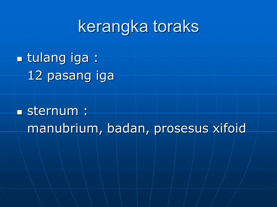 kerangka toraks tulang iga : 12 pasang iga sternum :