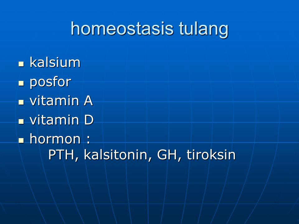 homeostasis tulang kalsium posfor vitamin A vitamin D