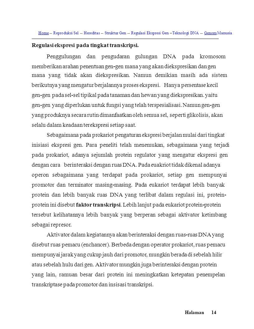 Home -- Reproduksi Sel -- Hereditas -- Struktur Gen -- Regulasi Ekspresi Gen –Teknologi DNA -- Genom Manusia