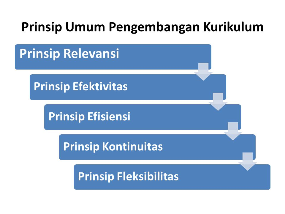 Prinsip Umum Pengembangan Kurikulum