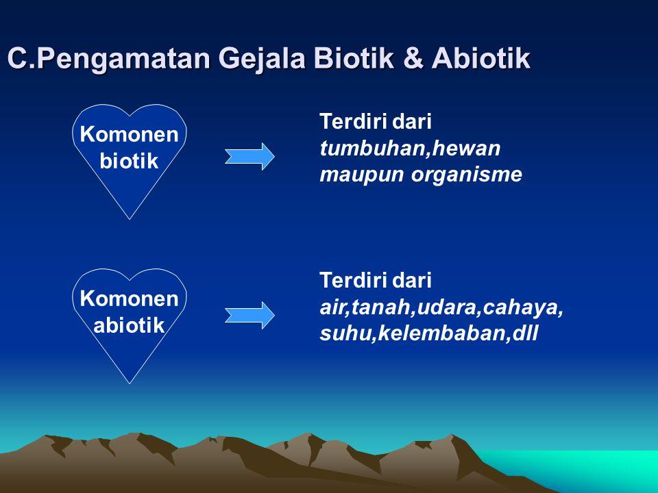 C.Pengamatan Gejala Biotik & Abiotik