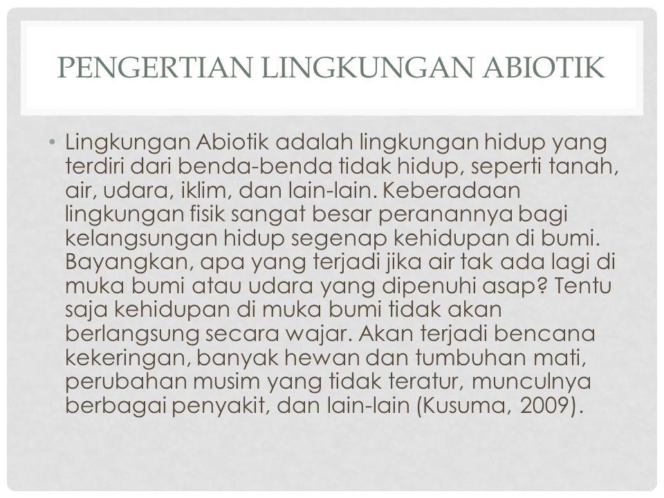 Pengertian Lingkungan Abiotik