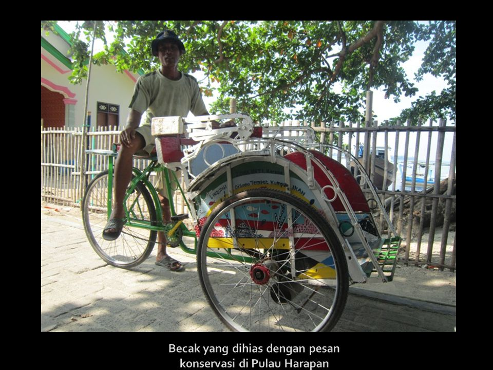 Becak yang dihias dengan pesan konservasi di Pulau Harapan