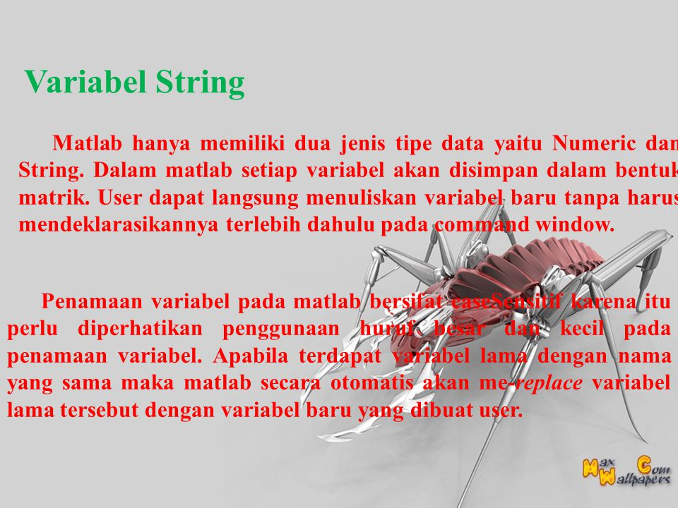 Variabel String