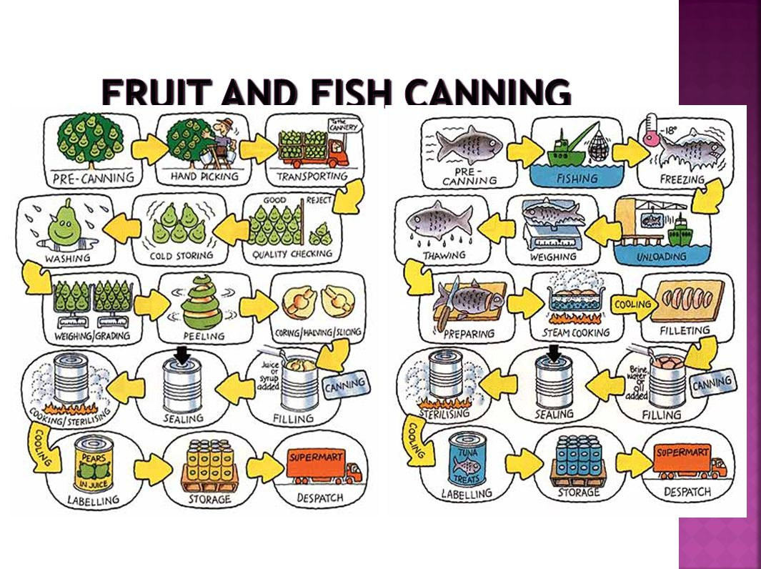 Fruit and Fish Canning