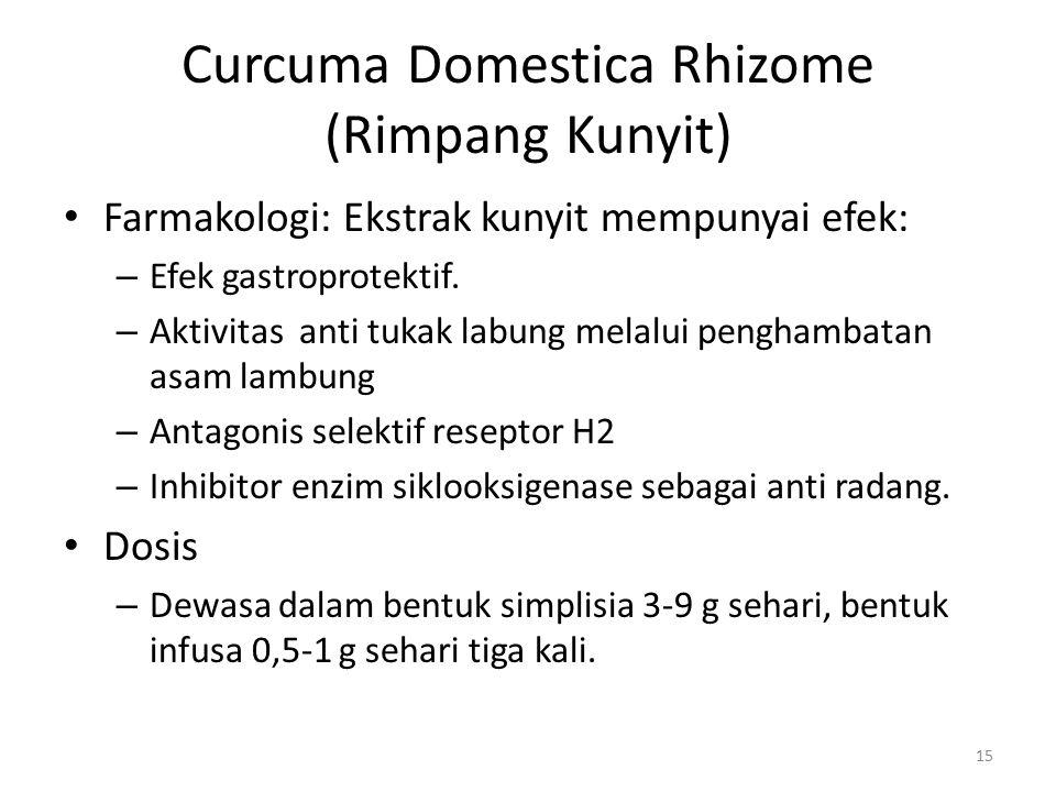 Curcuma Domestica Rhizome (Rimpang Kunyit)