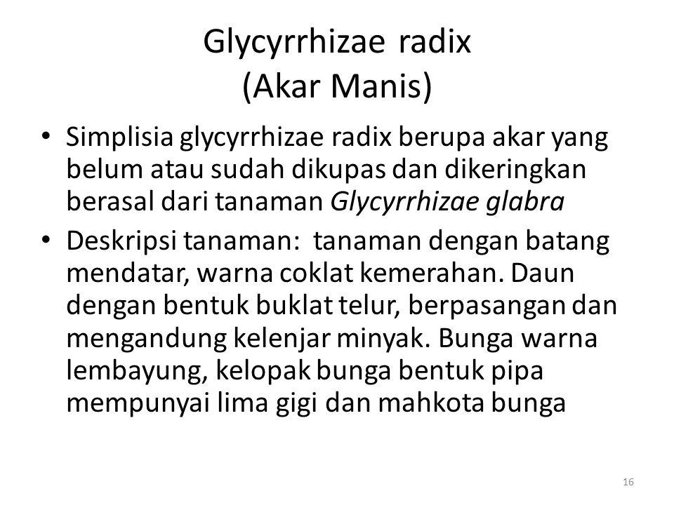 Glycyrrhizae radix (Akar Manis)