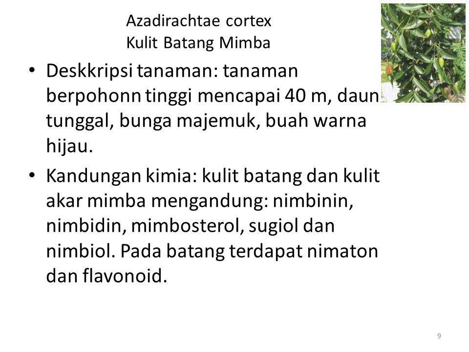 Azadirachtae cortex Kulit Batang Mimba