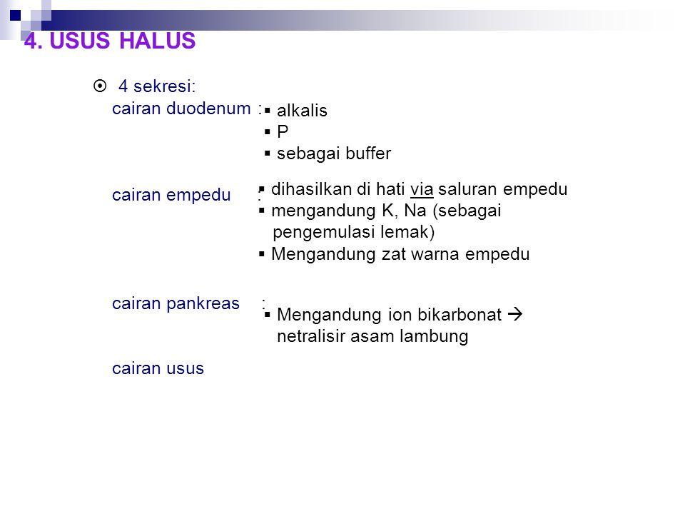 4. USUS HALUS 4 sekresi: cairan duodenum : cairan empedu : cairan pankreas : cairan usus.