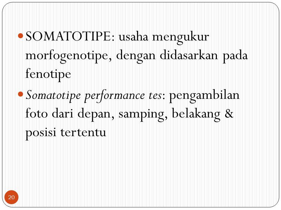 SOMATOTIPE: usaha mengukur morfogenotipe, dengan didasarkan pada fenotipe