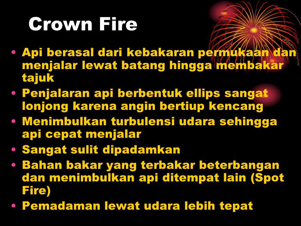 Crown Fire Api berasal dari kebakaran permukaan dan menjalar lewat batang hingga membakar tajuk.