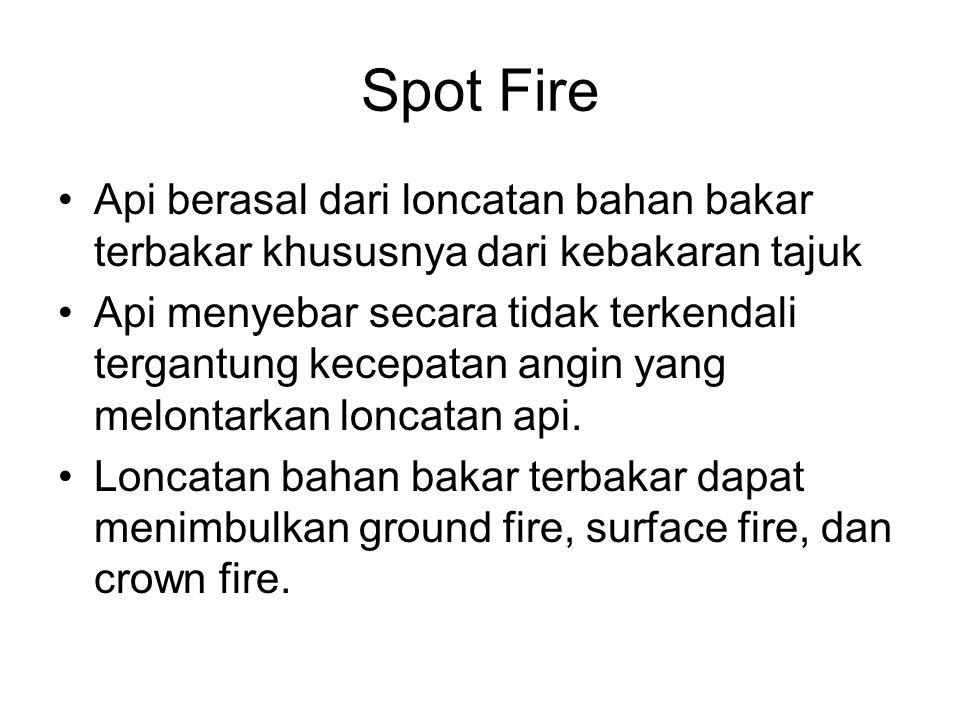 Spot Fire Api berasal dari loncatan bahan bakar terbakar khususnya dari kebakaran tajuk.