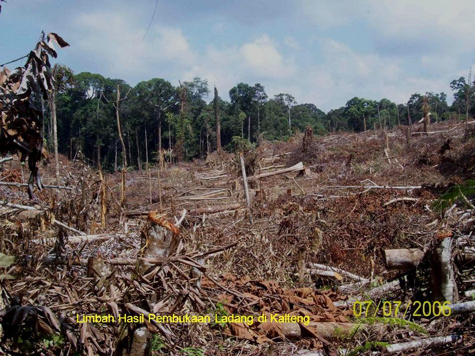 Limbah Hasil Pembukaan Ladang di Kalteng