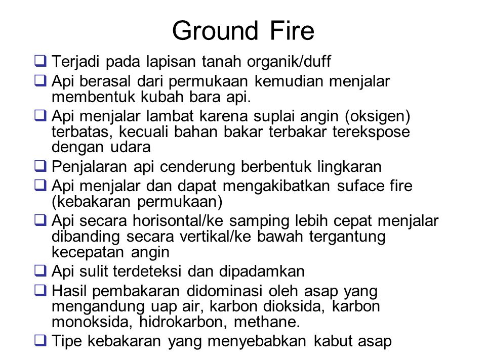 Ground Fire Terjadi pada lapisan tanah organik/duff