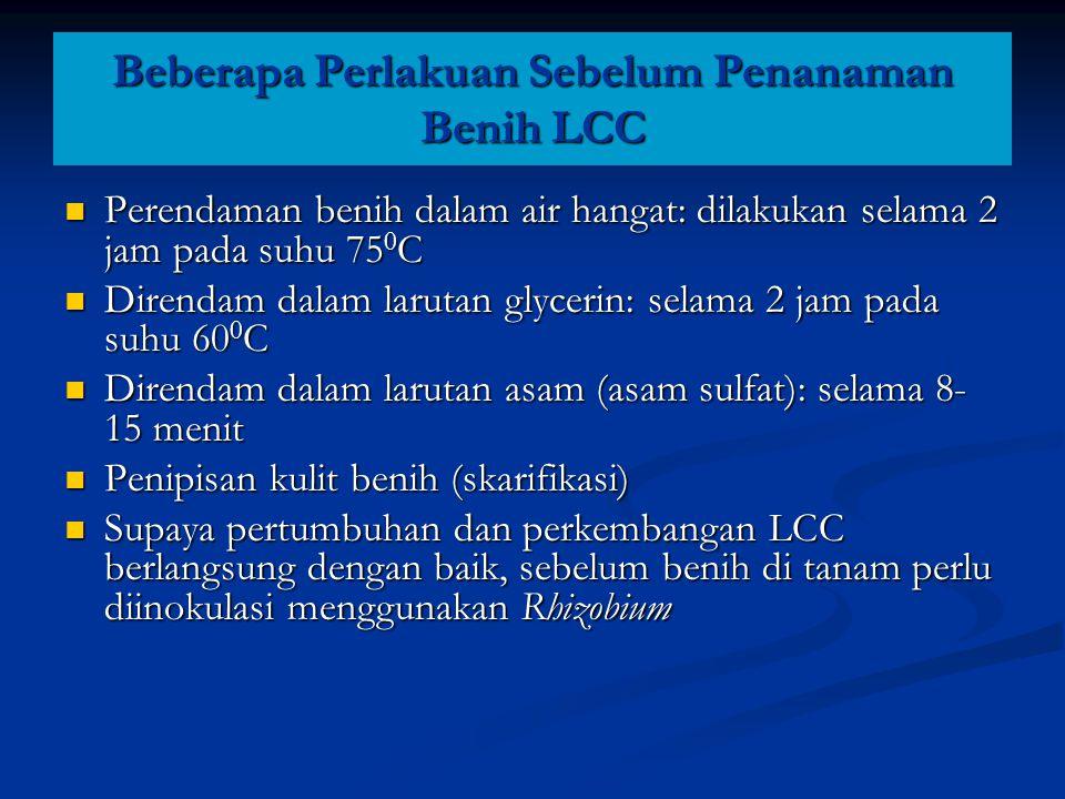Beberapa Perlakuan Sebelum Penanaman Benih LCC