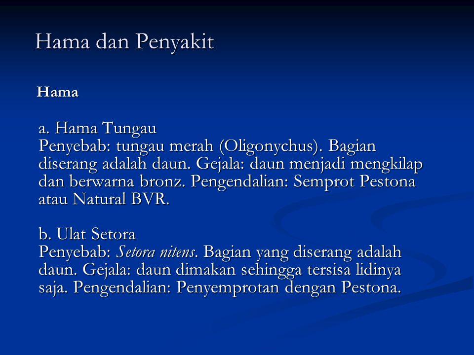Hama dan Penyakit Hama.