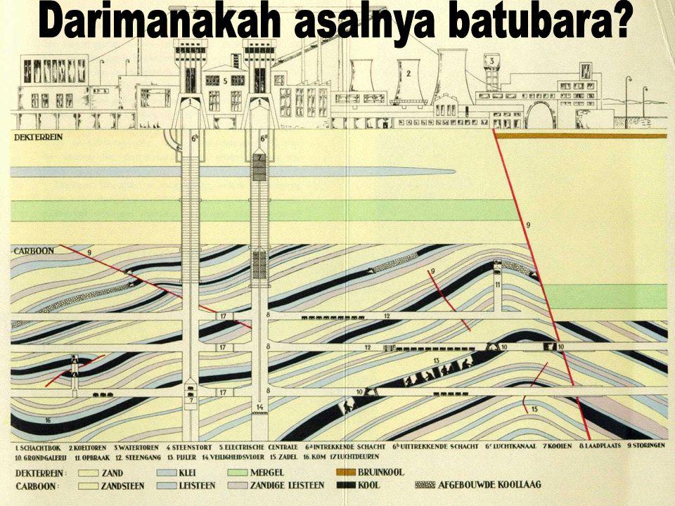 Darimanakah asalnya batubara