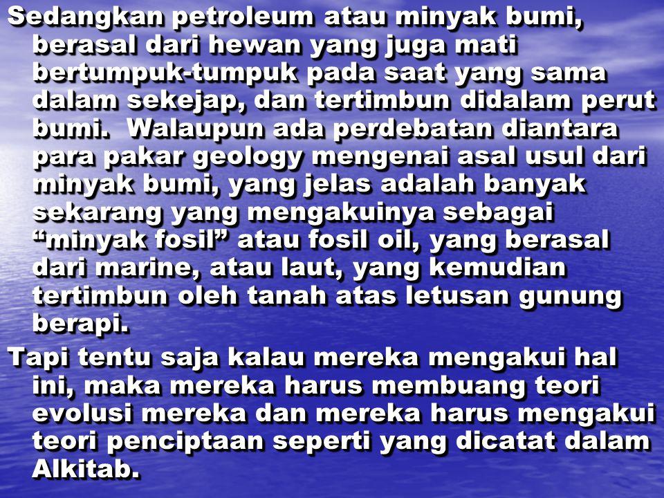 Sedangkan petroleum atau minyak bumi, berasal dari hewan yang juga mati bertumpuk-tumpuk pada saat yang sama dalam sekejap, dan tertimbun didalam perut bumi. Walaupun ada perdebatan diantara para pakar geology mengenai asal usul dari minyak bumi, yang jelas adalah banyak sekarang yang mengakuinya sebagai minyak fosil atau fosil oil, yang berasal dari marine, atau laut, yang kemudian tertimbun oleh tanah atas letusan gunung berapi.