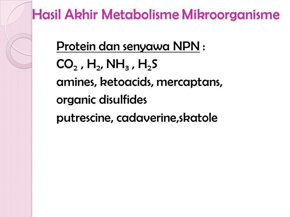 Hasil Akhir Metabolisme Mikroorganisme