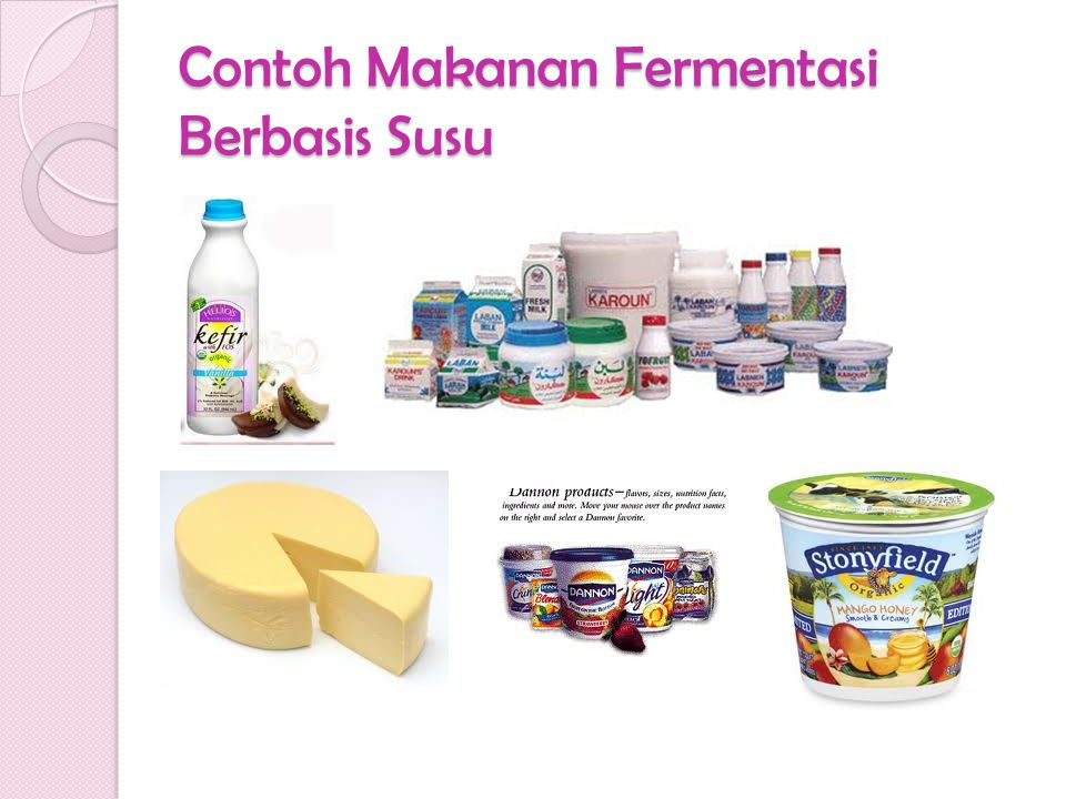 Contoh Makanan Fermentasi Berbasis Susu