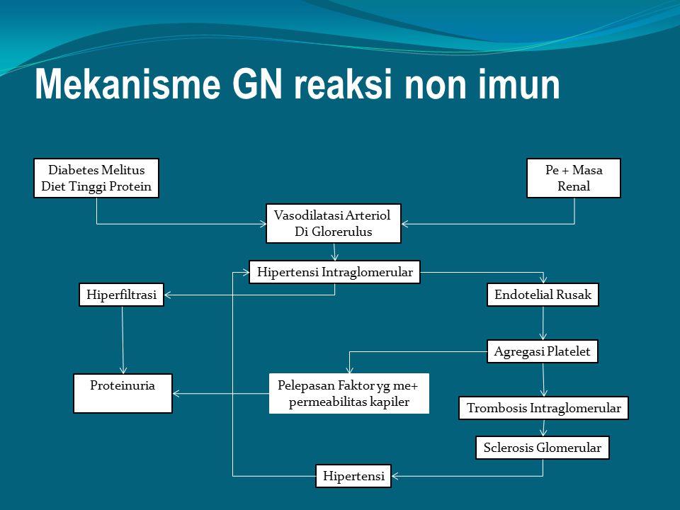 Mekanisme GN reaksi non imun
