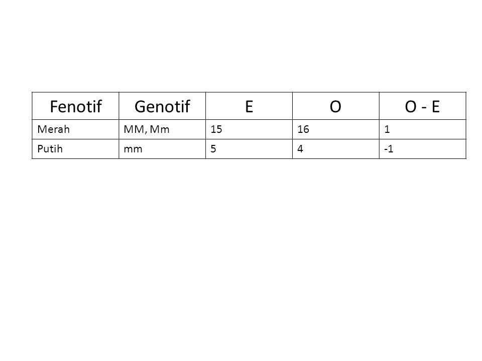 Fenotif Genotif E O O - E Merah MM, Mm 15 16 1 Putih mm 5 4 -1