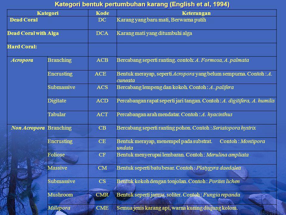 Kategori bentuk pertumbuhan karang (English et al, 1994)