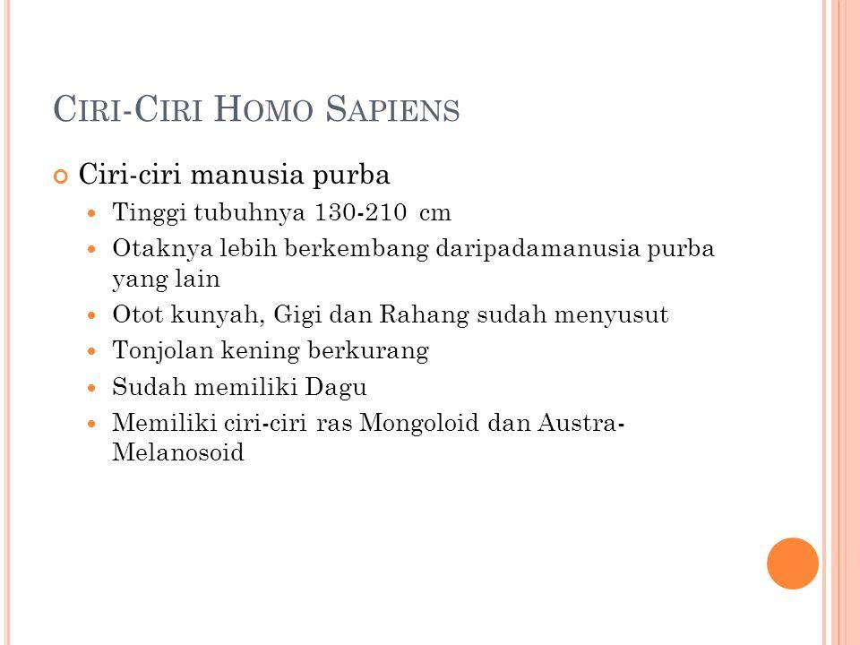 Ciri-Ciri Homo Sapiens