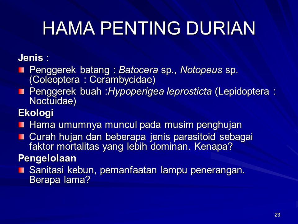 HAMA PENTING DURIAN Jenis :