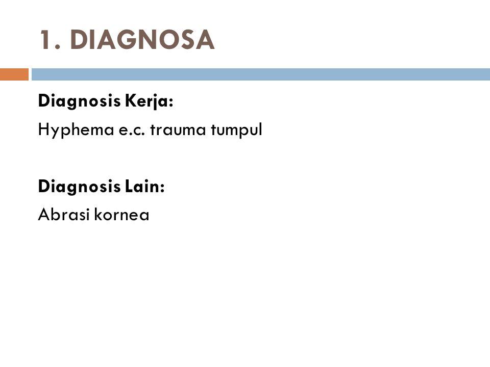 1. DIAGNOSA Diagnosis Kerja: Hyphema e.c. trauma tumpul Diagnosis Lain: Abrasi kornea