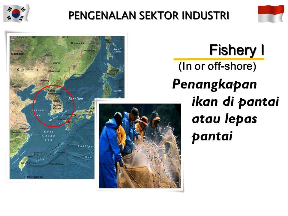 Penangkapan ikan di pantai atau lepas pantai