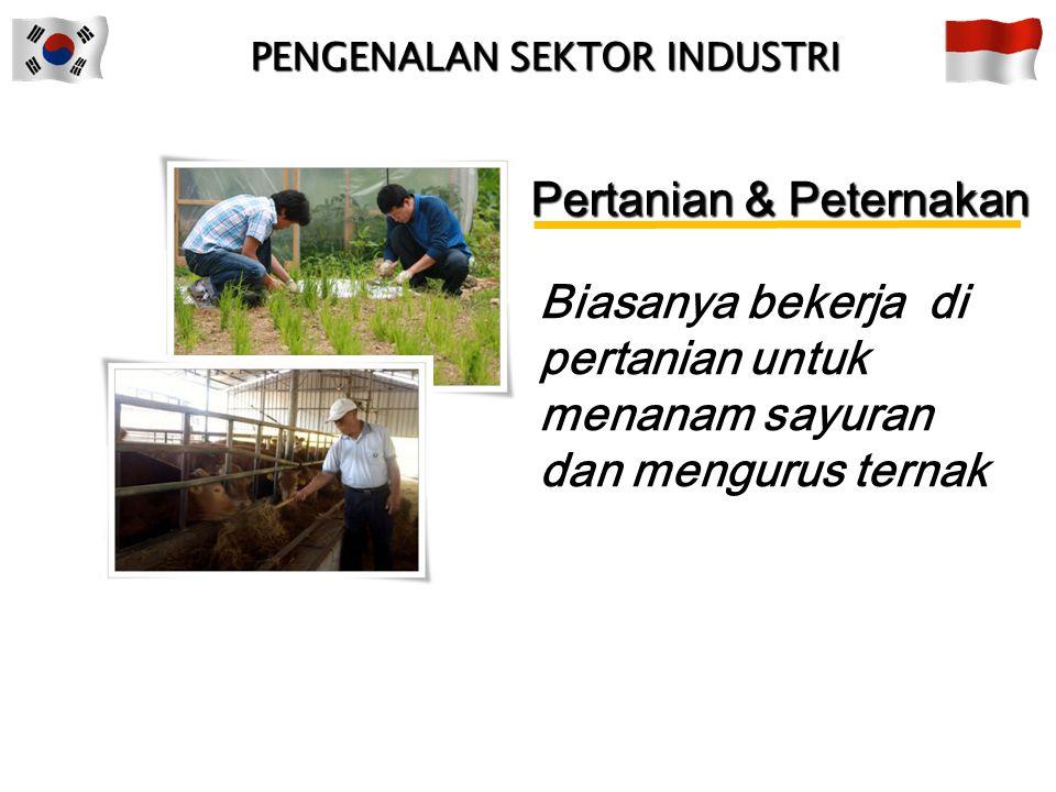 Pertanian & Peternakan