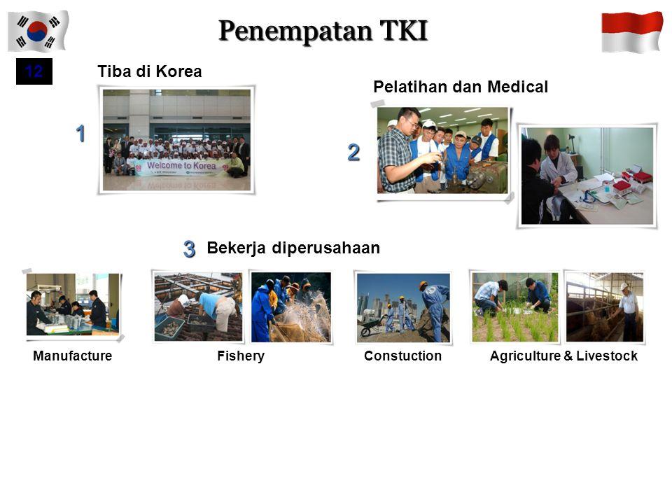 Penempatan TKI 1 2 3 12 Tiba di Korea Pelatihan dan Medical