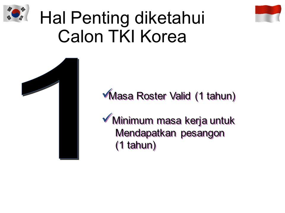 Hal Penting diketahui Calon TKI Korea