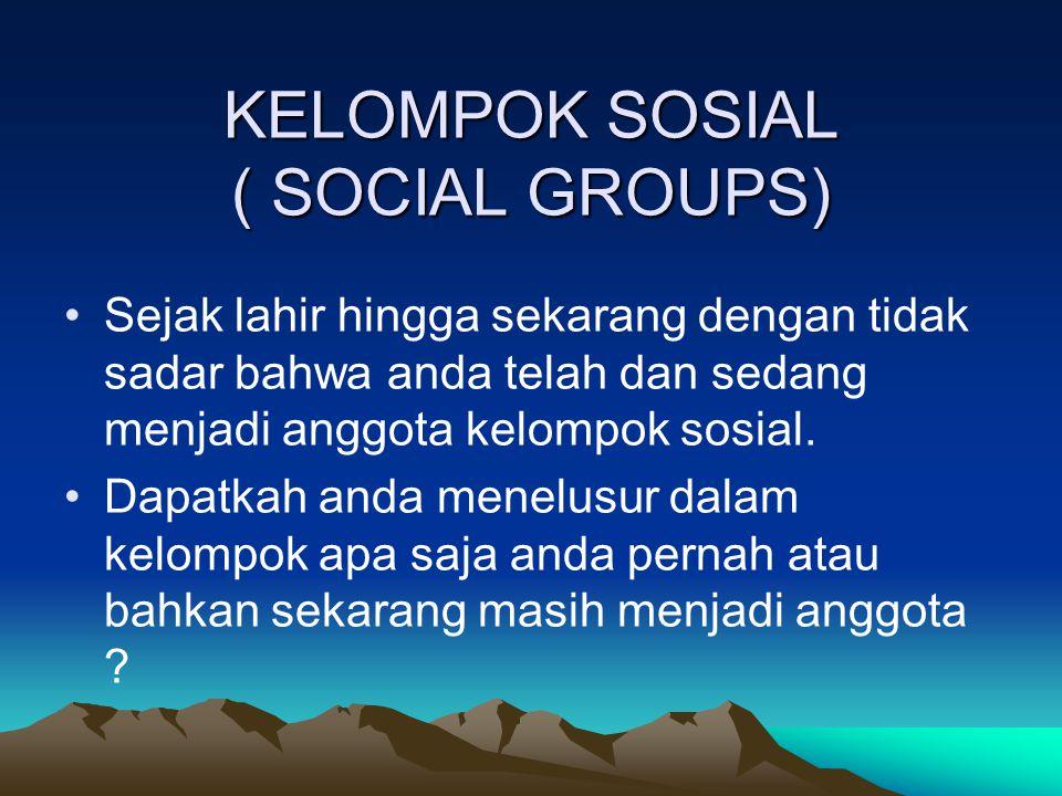 KELOMPOK SOSIAL ( SOCIAL GROUPS)