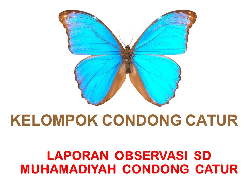 KELOMPOK CONDONG CATUR