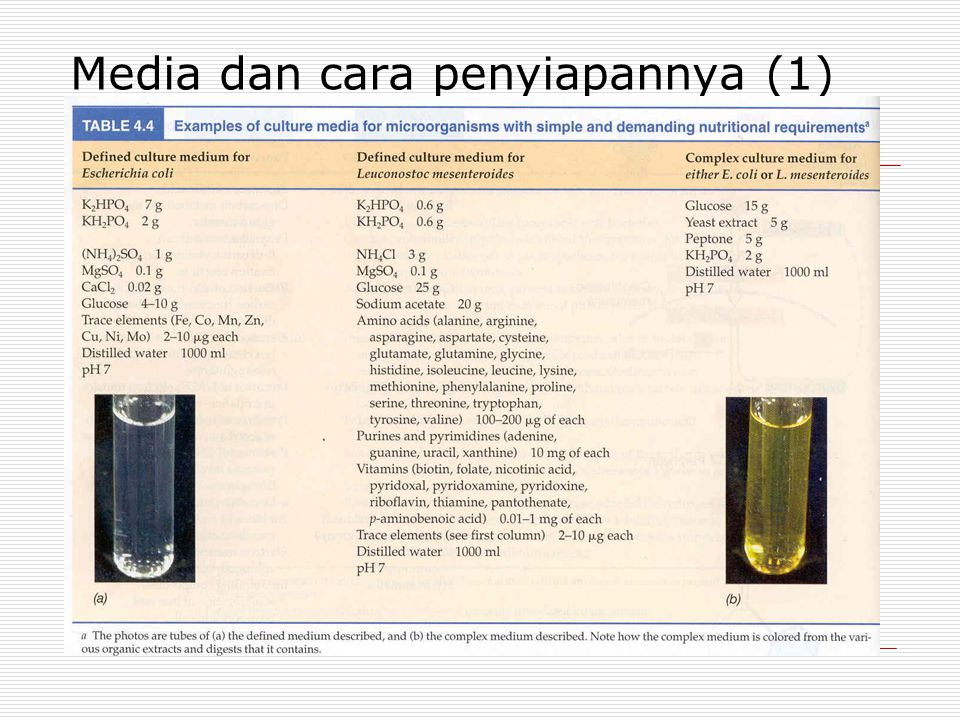 Media dan cara penyiapannya (1)