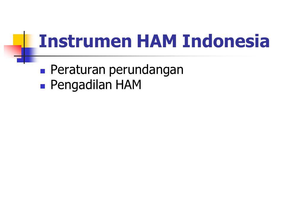 Instrumen HAM Indonesia