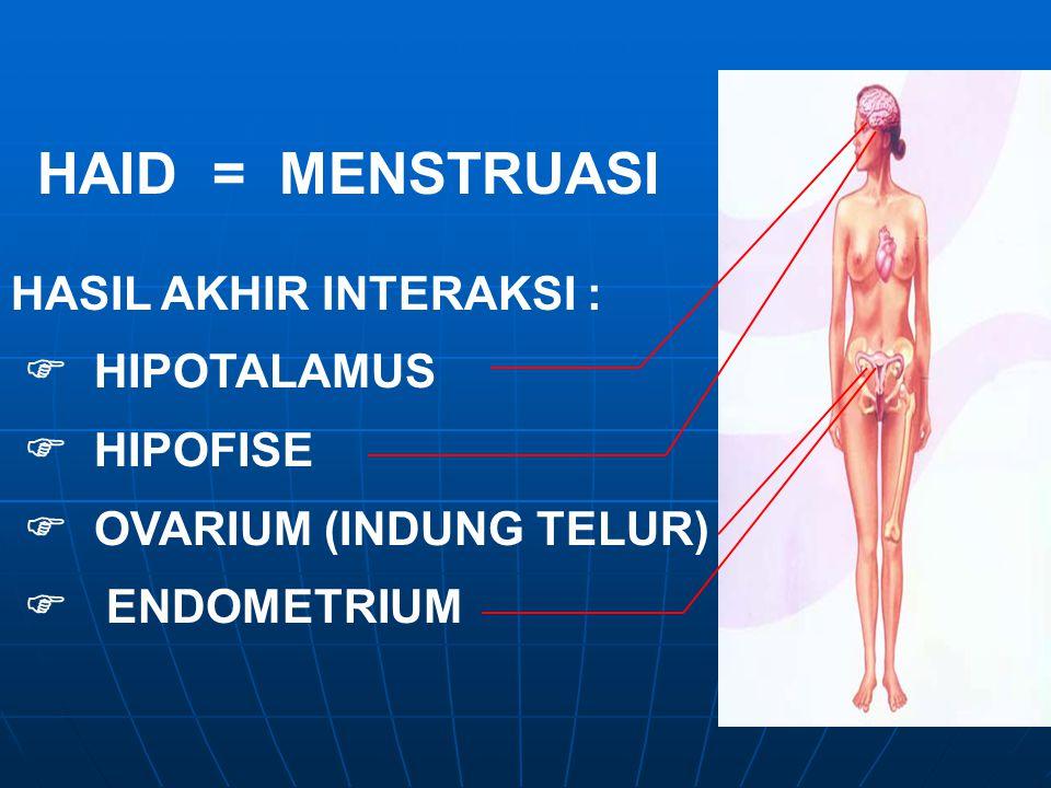HAID = MENSTRUASI HASIL AKHIR INTERAKSI :  HIPOTALAMUS  HIPOFISE