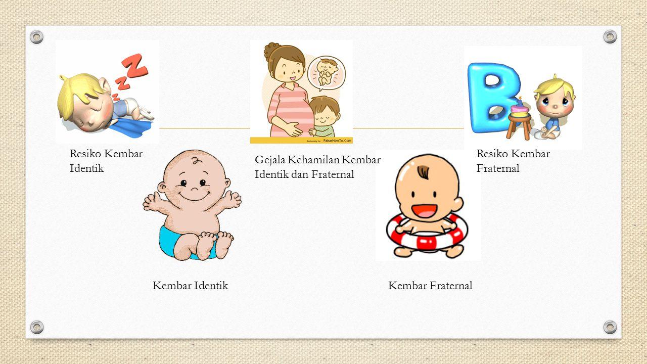 Resiko Kembar Identik Resiko Kembar Fraternal. Gejala Kehamilan Kembar Identik dan Fraternal. Kembar Identik.