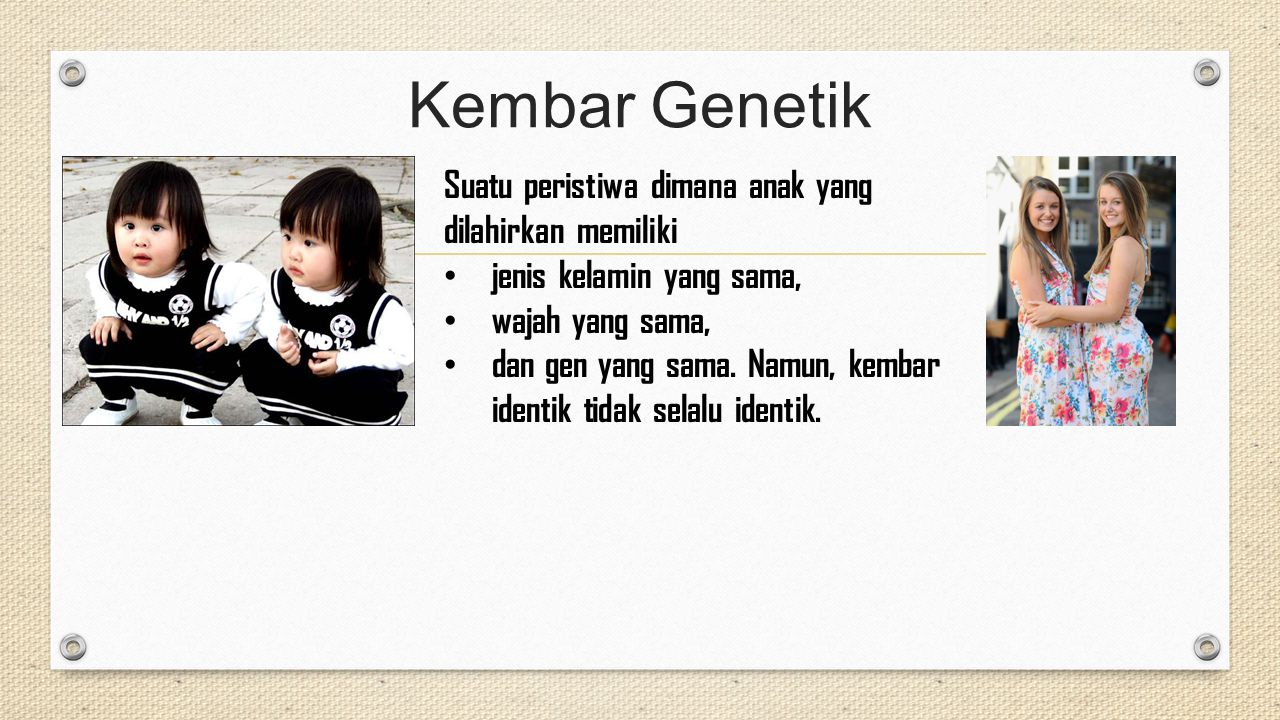 Kembar Genetik Suatu peristiwa dimana anak yang dilahirkan memiliki