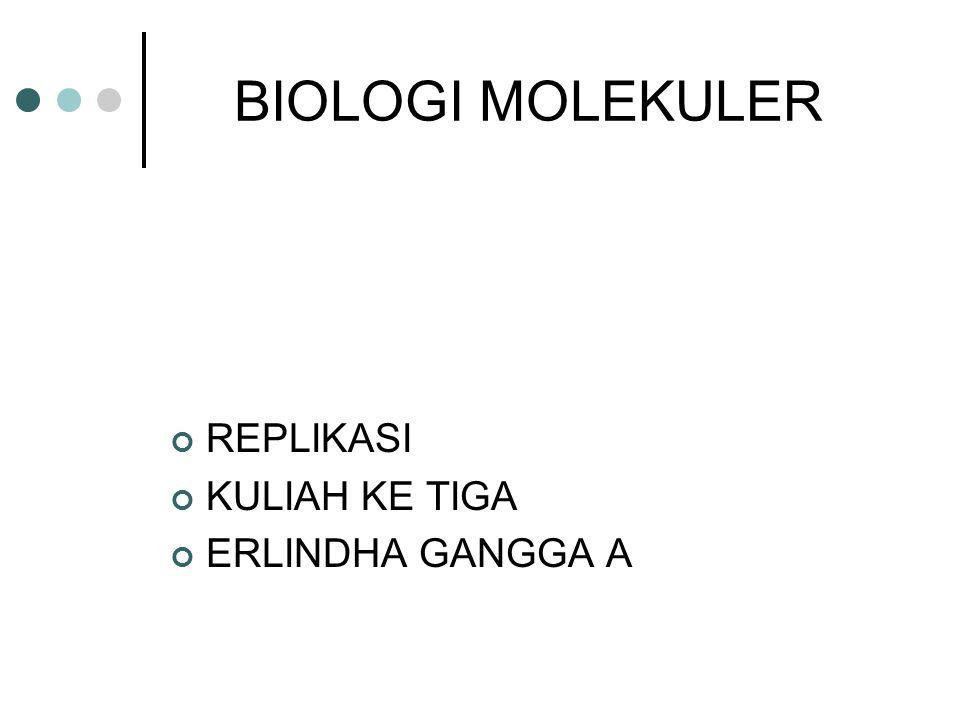BIOLOGI MOLEKULER REPLIKASI KULIAH KE TIGA ERLINDHA GANGGA A