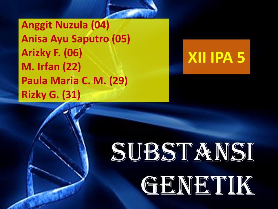 SUBSTANSI GENETIK XII IPA 5 Anggit Nuzula (04) Anisa Ayu Saputro (05)