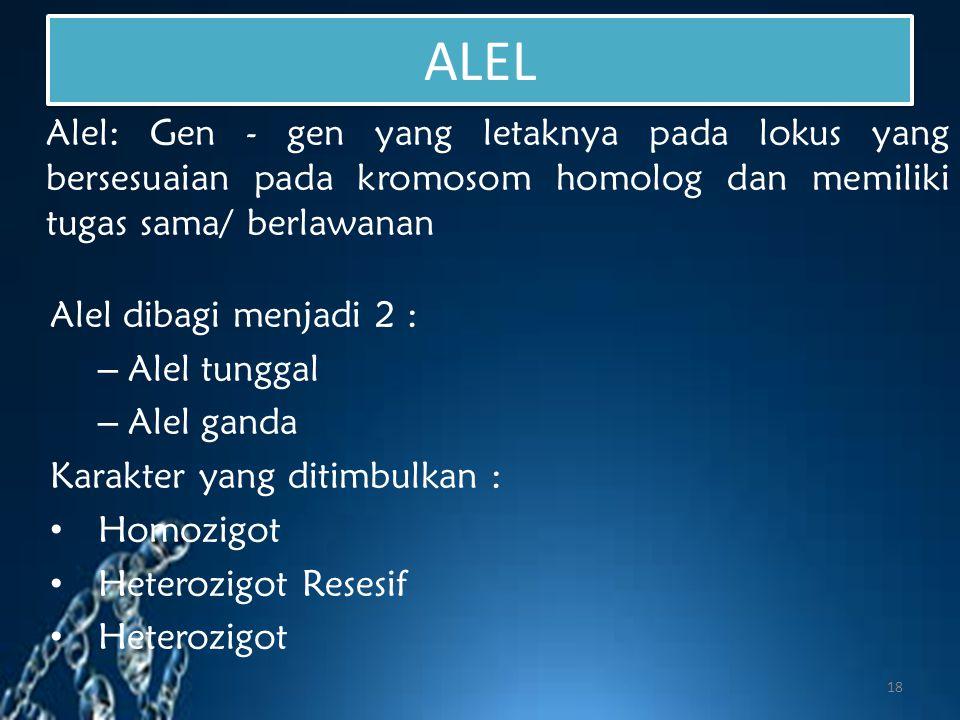 ALEL Alel: Gen - gen yang letaknya pada lokus yang bersesuaian pada kromosom homolog dan memiliki tugas sama/ berlawanan.