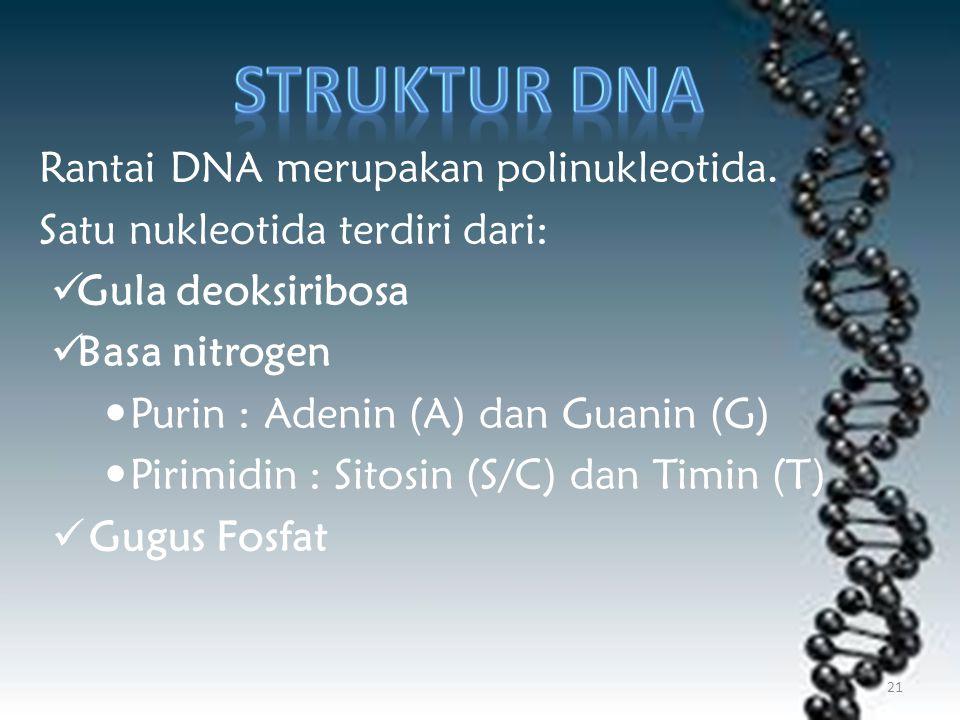 Struktur DNA Rantai DNA merupakan polinukleotida.